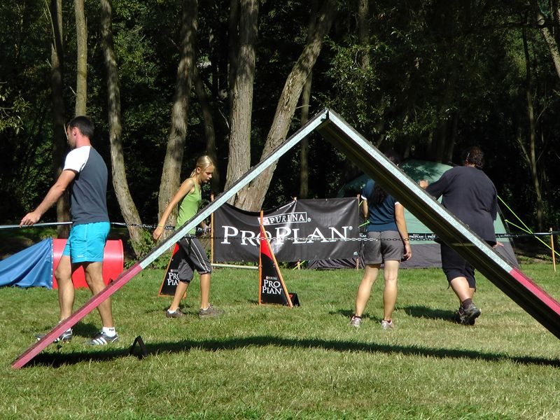 Purina Proplan cup